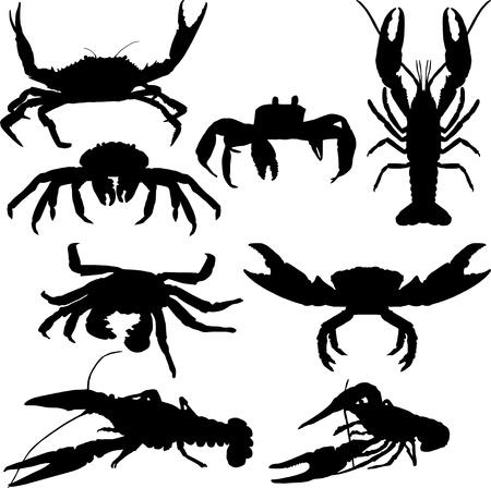 crayfish: crawfish and crab