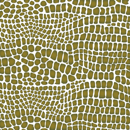 crocodile skin: Crocodile skin white