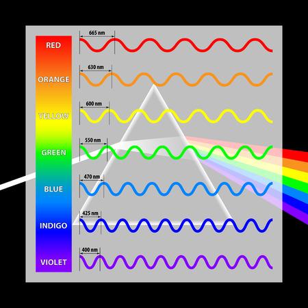 Golflengte kleuren in het spectrum