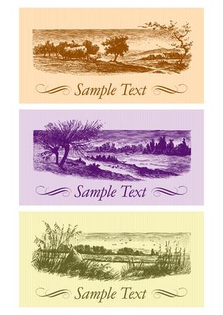 vintage cards set (vector) Vector