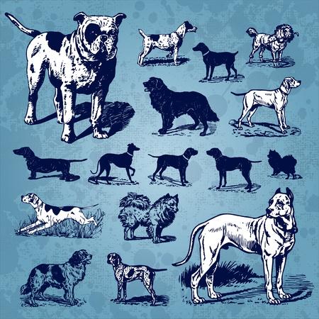 dogs vintage set (vector) Vector