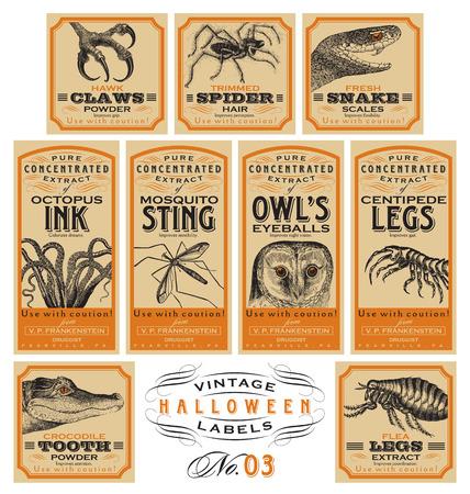 veneno frasco: Etiquetas divertidas del vintage de Halloween boticario - conjunto 03 (vector)