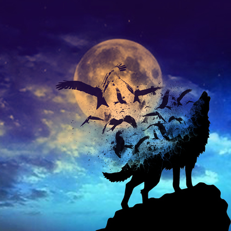 Howling wolf on the Moonlight Standard-Bild