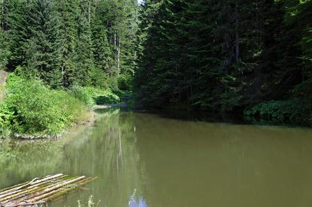raft: raft on the lake