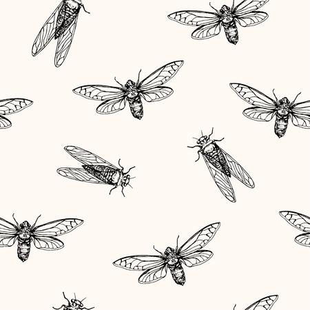 Vector illustration, seamless pattern. Cicadas. Vector pen style sketch.
