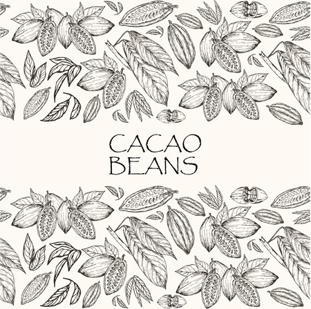 Vector illustration. Element of seamless pattern. Hand drawn cacao beans and cacao tree leafs