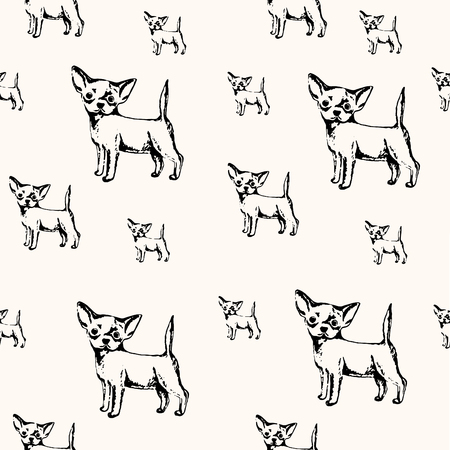 Vector illustration. Pen drawn sketch of chihuahua puppy. Vector seamless dog pattern.