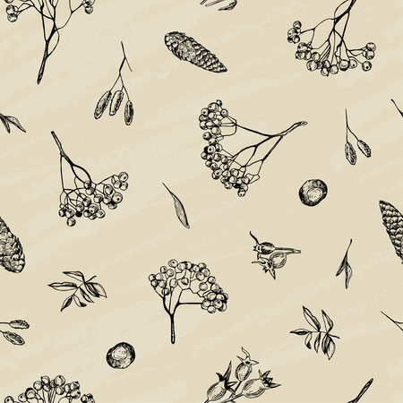 Vector illustration. Vector seamless pattern. Pen style sketch of ash tree brunch, chestnut, leaf and rose hips.