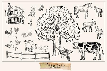 벡터 일러스트 레이 션. 펜 스타일 그려진 농장 동물 세트 : 암소, 말, 당나귀, 돼지, 토끼, 오리, 암탉, 수탉, 개, 고양이. 벡터 개체입니다.