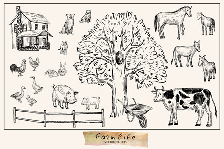 Vector illustration. Pen style drawn farm animals set:cow,horse, donkey, pig, rabbits, duck, hen, cock, dog, cats. Vector objects.