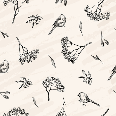 Vector sketch , pen style drawn birds, leaves and ash tree branches.
