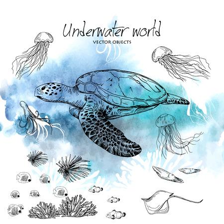 Vector illustration. Pen style vector sketch. Underwater world . Vector objects set.