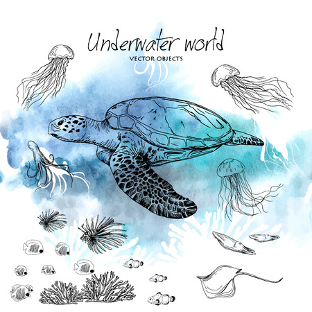 Vector illustration. Pen style vector sketch. Underwater world . Vector objects set.