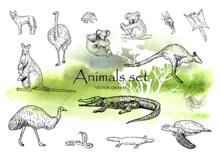 Vector hand drawn monochrome animals set. Pen style vector objects. Illustration