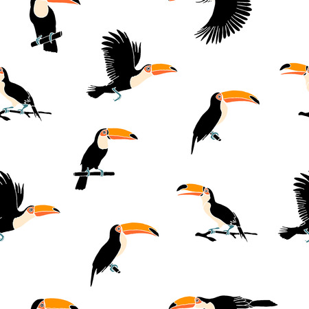 Vector summer background. Toucans