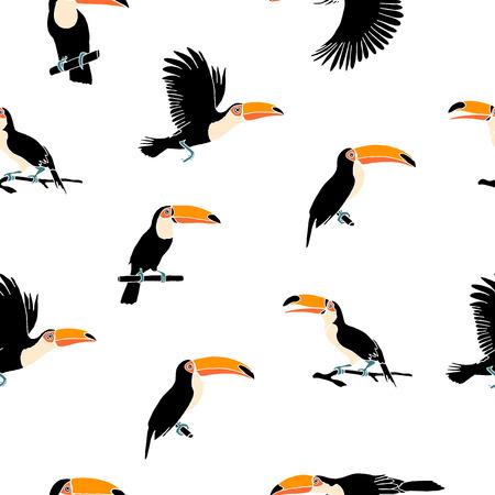Vector summer background. Toucans