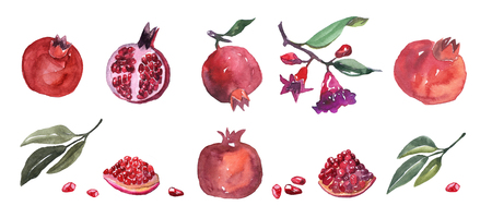 Watercolor illustration. Hand drawn pomegranate. Objects set. Stock Photo