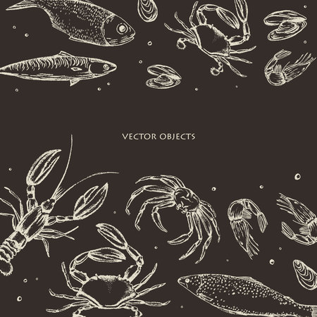 Vector illustration. Sea food : sea fish, crab, shrimps and mussels. Chalk style vector objects.