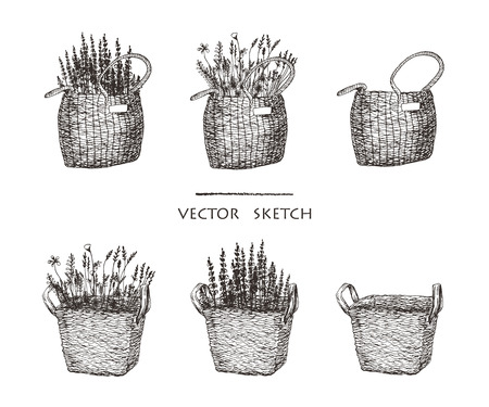 Vector illustration. Wicker baskets with flowers. Ethnic style vector sketch. Иллюстрация