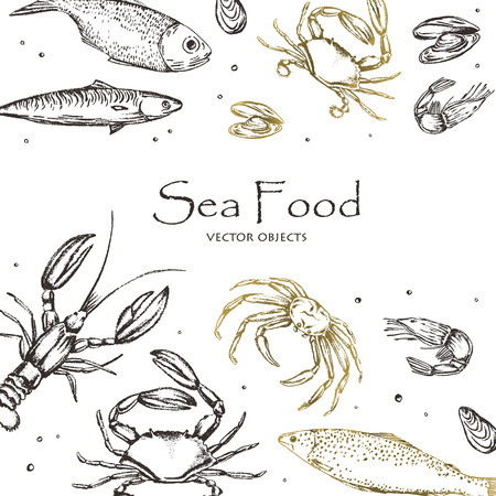 Vector illustration. Sea food : sea fish, crab, shrimps and mussels . Chalk style vector objects.