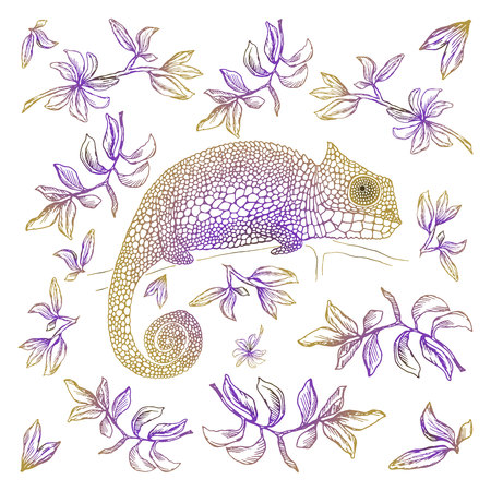 Vector illustration. Card design. Chameleon among the leaves.