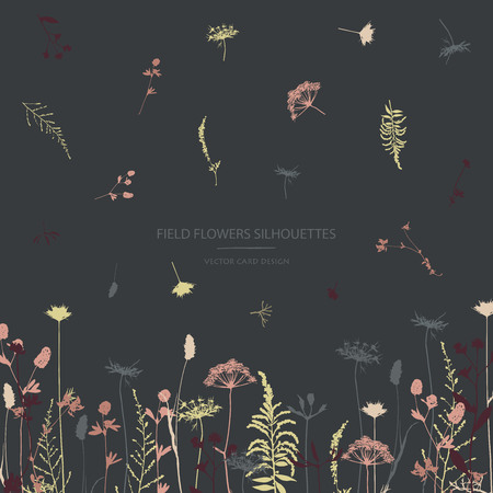 Vector silhouettes collection. Set of field herbs, flowers. Card design.