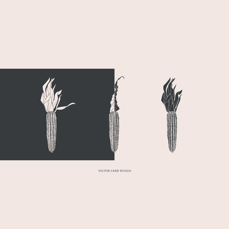 Vector illustration. Stylized corn silhouettes. Vector card. Cover design.