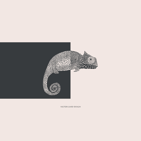 Vector illustration.Chameleon silhouette. Vector card. Cover design.