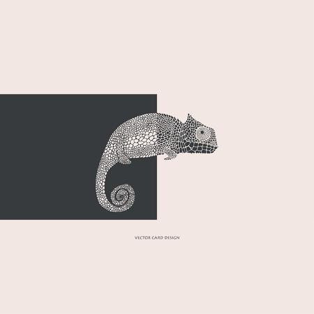 Vector illustration.Chameleon silhouette. Vector card. Cover design.