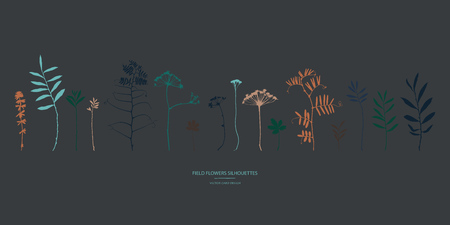 Vector silhouettes collection. Set of field flowers, herbs. Illustration