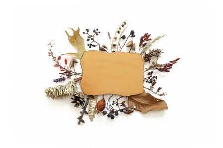 Dried flowers leaves and berries composition around ragged sheet of paper Stockfoto