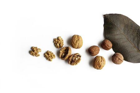Walnut kernels half and whole with tree leaf isolated on white background Reklamní fotografie
