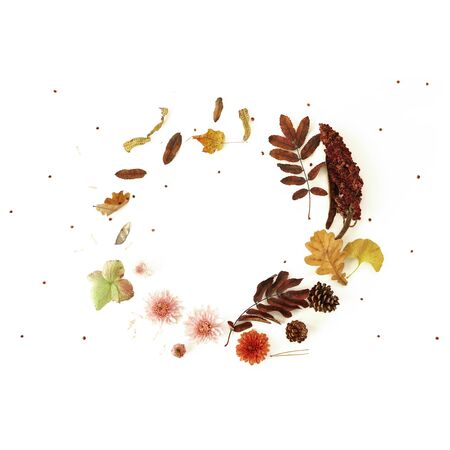 Flowers leaves and berries wreath . Beautiful autumn composition on white background Photo