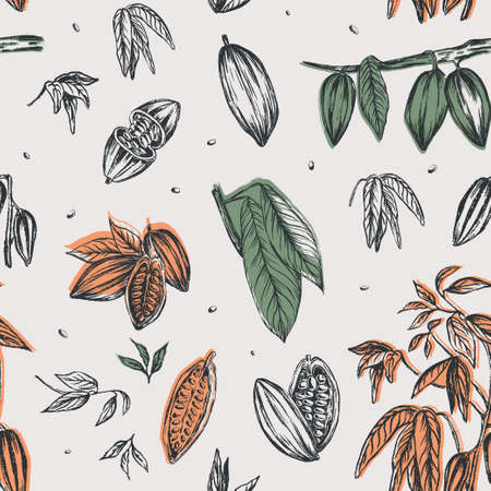 Sketched hand drawn cacao beans, cacao tree leafs and branches. Chalk style vector illustration. Element of seamless pattern