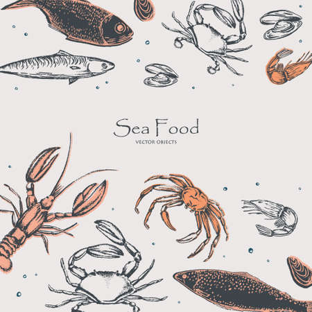 Inhabitants of the oceans and seas: sea fish, crab, shrimps and mussels. See food. Chalk style vector objects set  イラスト・ベクター素材