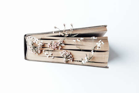 Old book with field flowers as bookmarks on white background. Photo