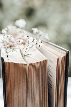 Old book with field flowers as bookmarks on blurred background. Photo Archivio Fotografico