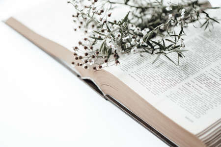 Open old book with field flowers on it. Photo