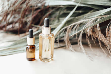 Glass bottles with natural oil for face and body care. Palm leaves on background. Archivio Fotografico