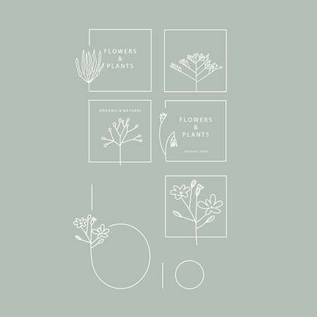 Logotype elements. Organic and nature. Plants drawn in lines