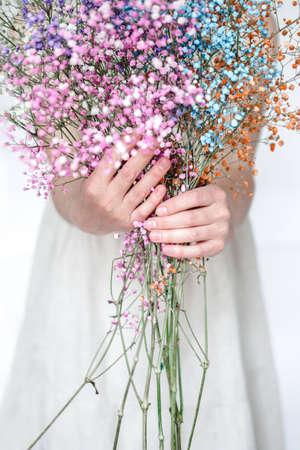Colorful gypsophila flowers bouquet in woman hands. Photo Archivio Fotografico