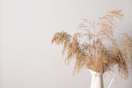 Pampas grass branch in vase against gray wall.