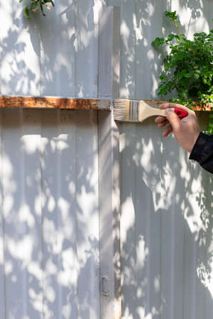 mans hand holds a brush and paints a metal fence in gray Stock Photo