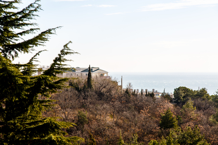 The Villa stands amongst cypress trees on the shore of the sea.