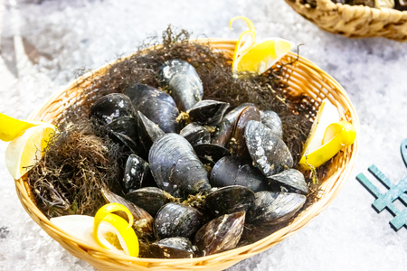 Mussels lie in the basket on the ice on the window.