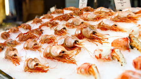 Nerd (botan-Abby), combed shrimp lying on the ice in the shop window