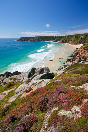 porthcurno: Heather on the cliffs over beach in Porthcurno, Cornwall, UK. Stock Photo