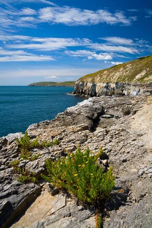 jurassic coast: Jurassic coast near Swanage, Dorset, UK.