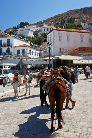 mules: Mules on the quay in the centre Hydra waiting to be hired Editorial