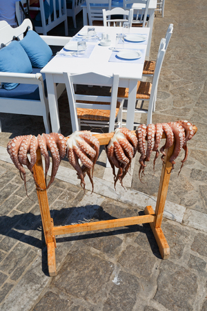 cycladic: Octopuses drying in the sun in front of a restaurant in Naousa village on Paros island, Greece